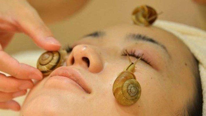 Cách làm đẹp với dịch nhầy của ốc sên