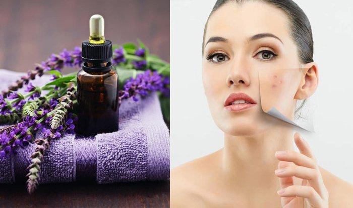 Tự tay làm tinh dầu Lavender chưa bao giờ dễ đến vậy!