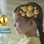 Kiến thức vàng giúp cha mẹ hỗ trợ phát triển trí não cho bé
