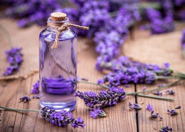 Tinh dầu oải hương hay được gọi với cái tên quốc tế đó là Lavender